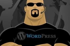 طريقة جديدة لحماية wordpress